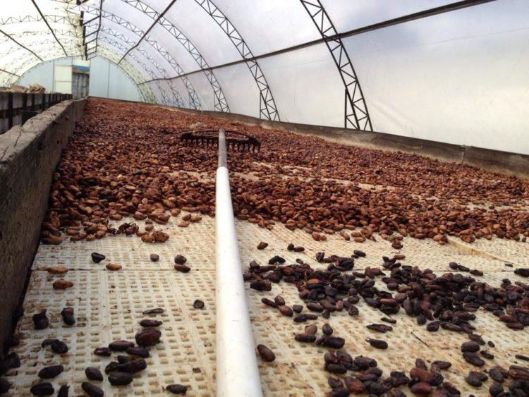 Hasnaâ-Chocolats